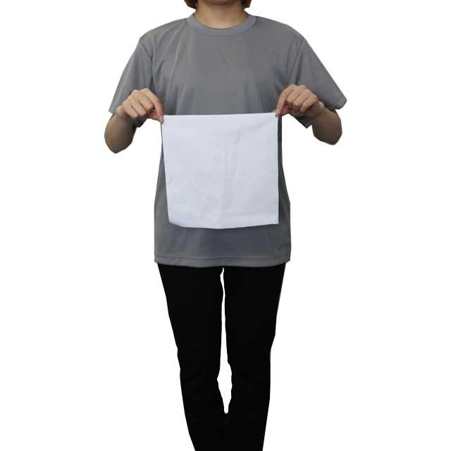 タオルのサイズ感です。