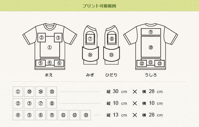 ナイスTシャツのプリント可能範囲