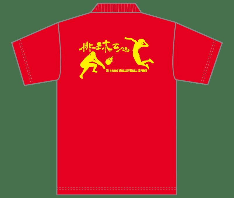 オリジナルデザイン例|山形県 平野バレーボールスポーツ少年団様